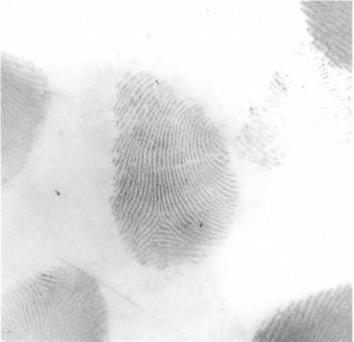police scientifique trace papillaire digitale